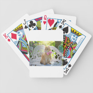 Cat Kitty Feline Summer Sunshine Pet Animal Cute Bicycle Playing Cards