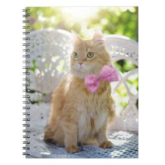Cat Kitty Feline Summer Sunshine Pet Animal Cute Notebook