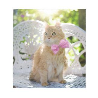 Cat Kitty Feline Summer Sunshine Pet Animal Cute Notepad