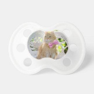 Cat Kitty Feline Summer Sunshine Pet Animal Cute Pacifier