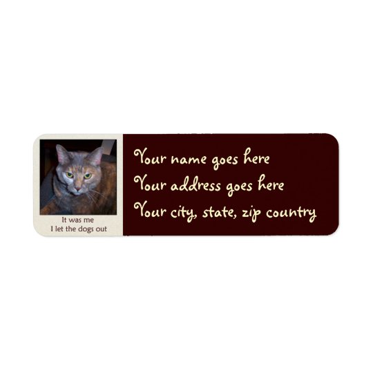 Cat Let The Dogs Out Return Address Label