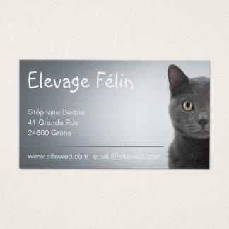 Cat-like breeding, calling card cat