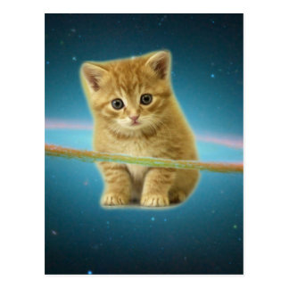 Cat lost in space postcard