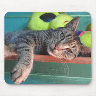 Cat Love Mouse Pad