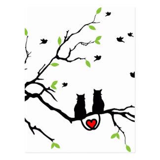 Cat Love Postcard