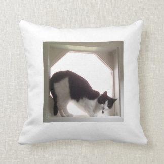 Cat lovers cat throw pillow