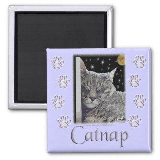 "Cat Lover's Purple Paws ""Catnap"" Square Magnet"