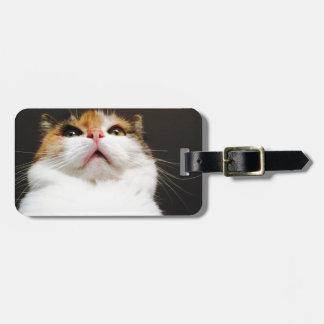 cat luggage tag