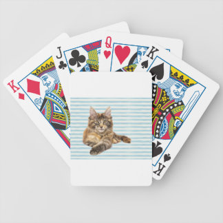 Cat, Maine Coon Bicycle Playing Cards