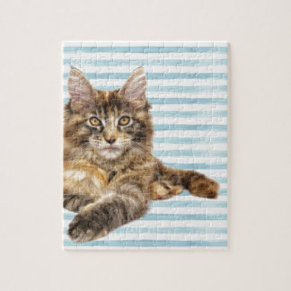 Cat, Maine Coon Jigsaw Puzzle