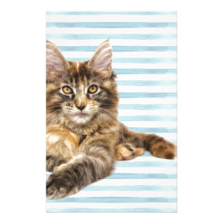 Cat, Maine Coon Stationery