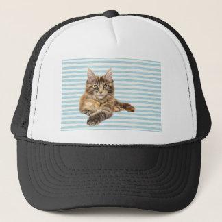 Cat, Maine Coon Trucker Hat
