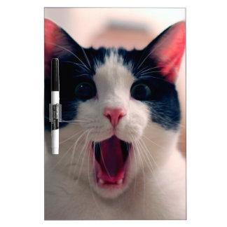 Cat meme - cat funny - funny cat memes - memes cat dry erase board