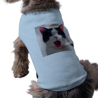 Cat meme - cat funny - funny cat memes - memes cat shirt