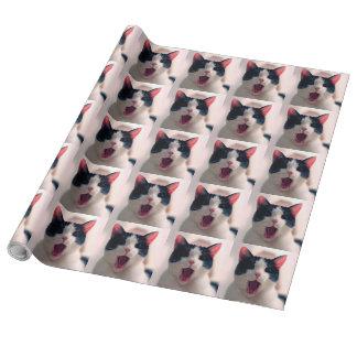 Cat meme - cat funny - funny cat memes - memes cat wrapping paper
