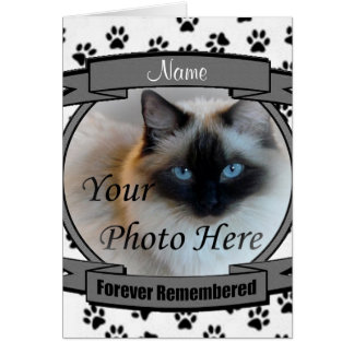 Cat Memorial Announcement - Forever Remembered