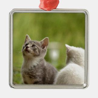 cat metal ornament