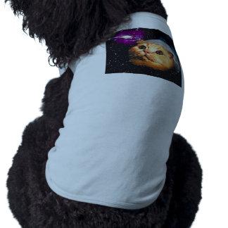 cat moon ,cat and moon ,catmoon ,moon cat shirt