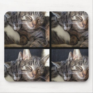 Cat & Mouse Mouse Pad