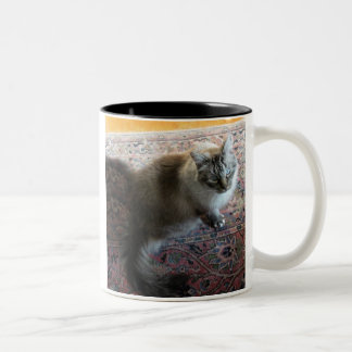 Cat mug with verse...In a cat's loving eye...
