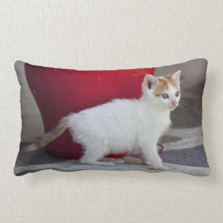 Cat, Mykonos, Greece Lumbar Pillow