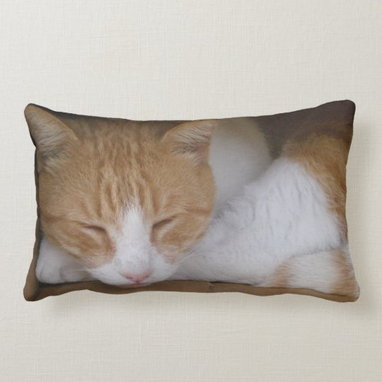 "Cat Nap Lumbar Pillow 13"" x 21"""