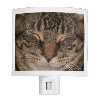 Cat Nap Night Light