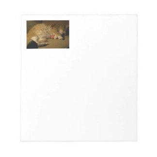 Cat Nap Notepad