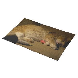 Cat Nap Placemat