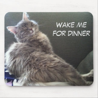 Cat Nap: Wake me for dinner Mouse Pad