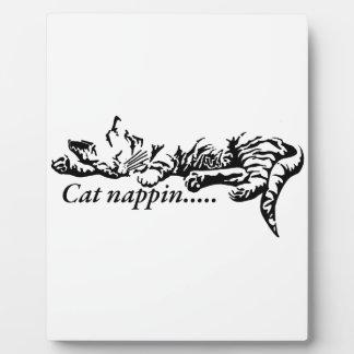 Cat nappin.......... plaque