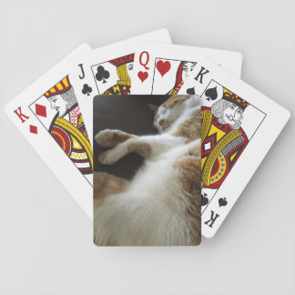 Cat naps on sofa playing cards