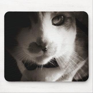 Cat noir mouse pad