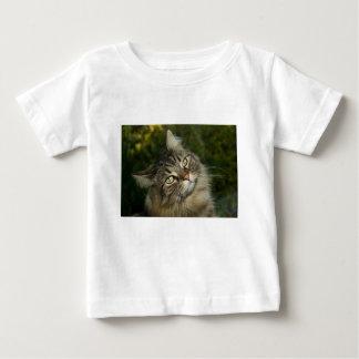 Cat Norwegian Forest Cat Sweet Domestic Cat Curiou Baby T-Shirt