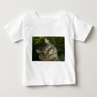 Cat Norwegian Forest Cat Sweet Domestic Cat Curiou Baby T-Shirt