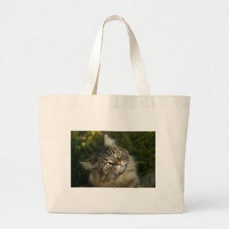 Cat Norwegian Forest Cat Sweet Domestic Cat Curiou Large Tote Bag