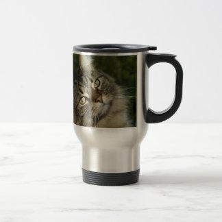 Cat Norwegian Forest Cat Sweet Domestic Cat Curiou Travel Mug