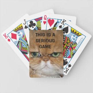 CAT NOT FRIENDLY SERIOUS CAT GREEN EYES STARE LOOK BICYCLE POKER CARDS