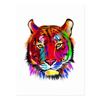 Cat of many colors postcard