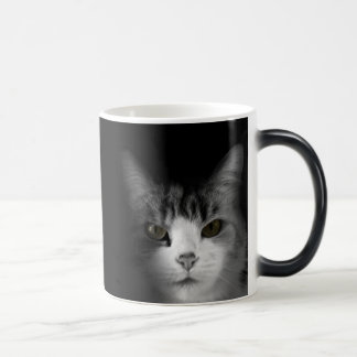 Cat on Black Morphing Mug