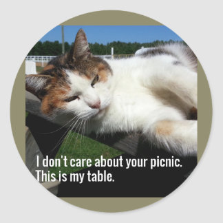 Cat On Picnic Table Classic Round Sticker