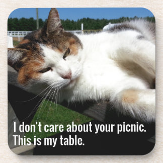 Cat On Picnic Table Coaster
