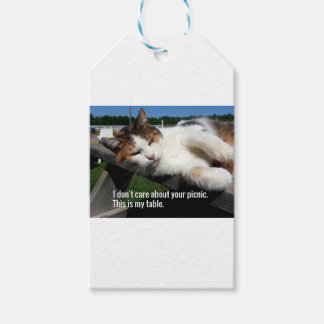Cat On Picnic Table Pack Of Gift Tags