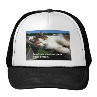 Cat On Picnic Table Trucker Hat