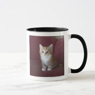 Cat on sofa mug