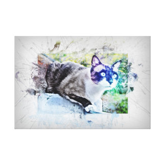 Cat on stone. Work of art, water color, Grunge Canvas Print