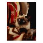 Cat peeking through quilt postcard