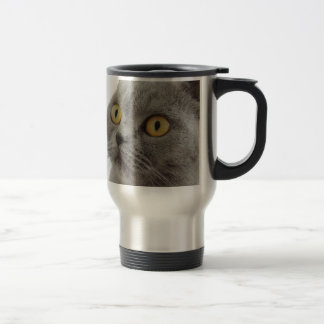 Cat Pet Animal Grumpy Frown Peace Love Destiny Stainless Steel Travel Mug