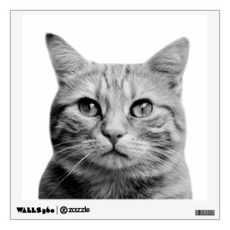 Cat pet animal photography black and white wall decal