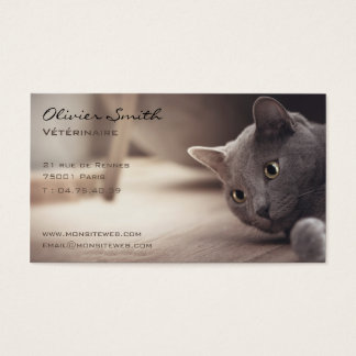 Cat, pet beautiful business card